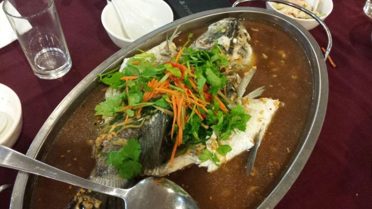 Hong Kong style steam fish