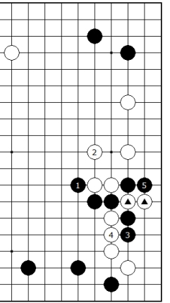 Diagram 12 - Black Success?